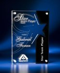 Star Cutout Clear and Black Acrylic Award Modern Design Awards