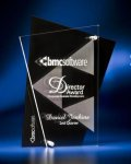 Abstract Clear and Black Acrylic Award Sales Awards