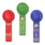 Scholastic Rosette Award Ribbon Volleyball Award Trophies